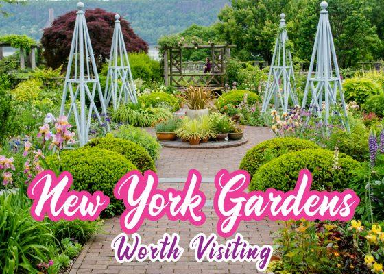 New York Gardens Worth Visiting