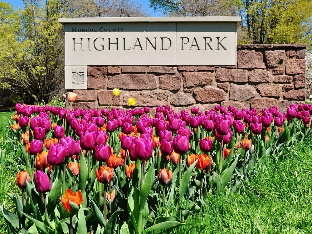 Highland Park Conservatory