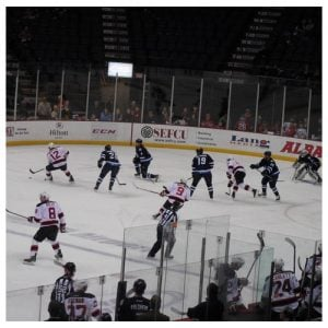 Albany Devils at the Time Union Center