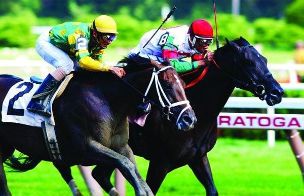 Horses, History & Health