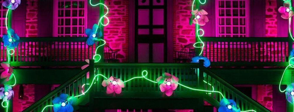 Lightscapes: A Springtime Garden Fantasy