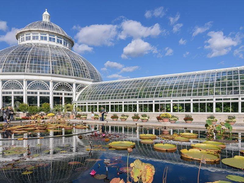 New York Botanical Gardens.1