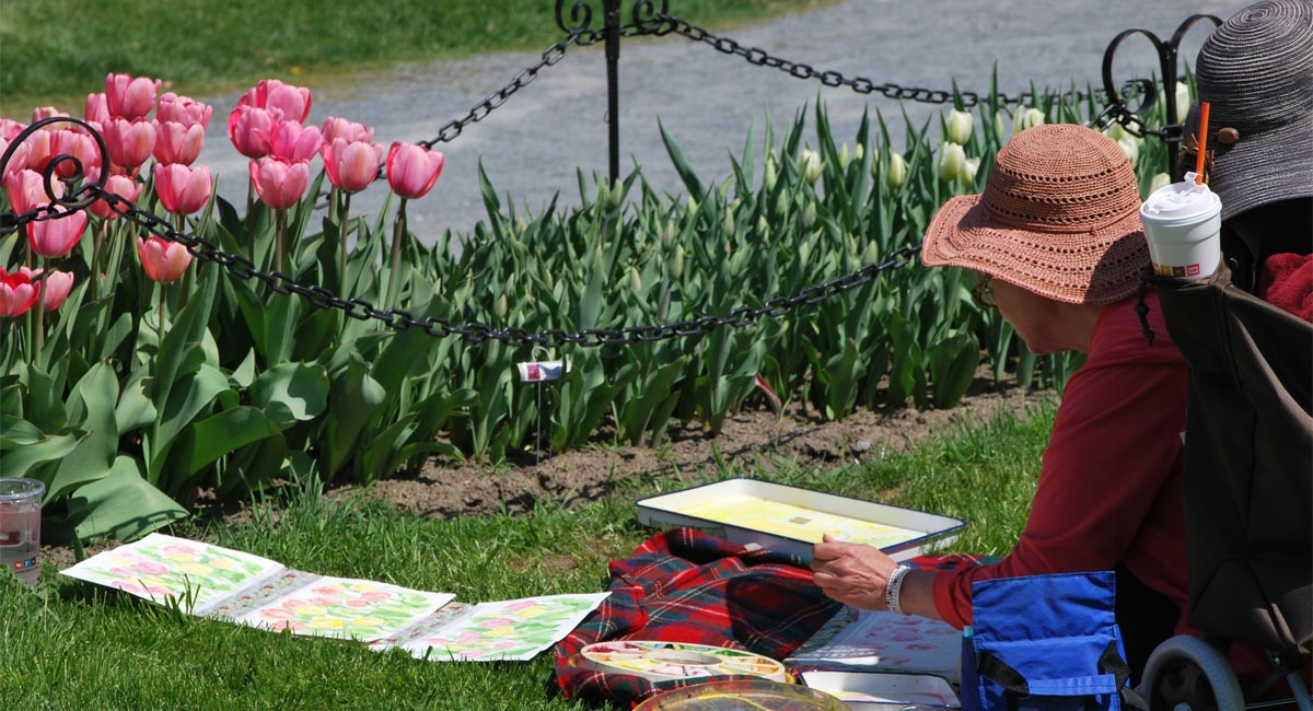 71st Annual Albany Tulip Festival Events In Albany New