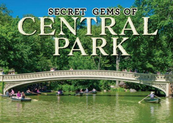 Central Park Blog Header
