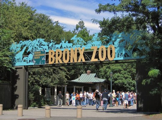 Visitors entering the Bronx Zoo | Photo by Postdlf, Wikimedia Commons