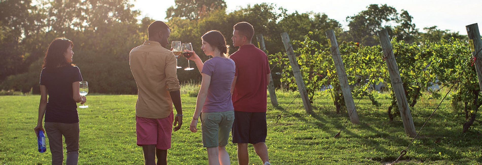Niagara Wine Trail - Grant Taylor Photography, Inc