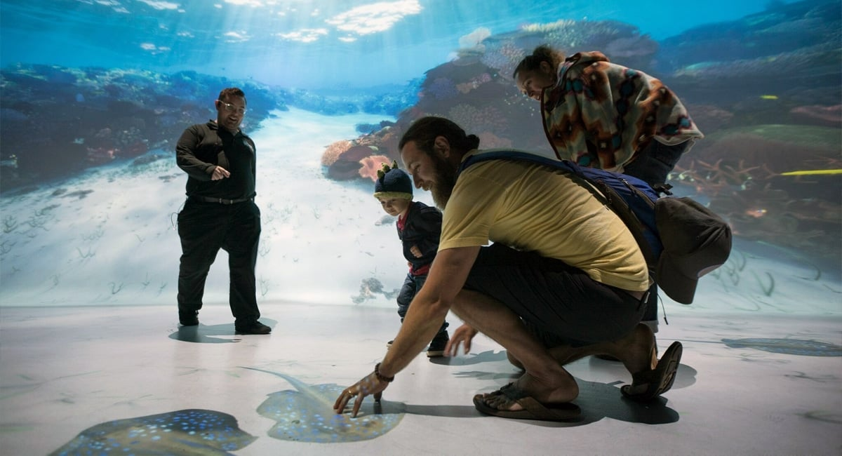 The Interactive Shallows - National Geographic Encounter-Ocean Odyssey