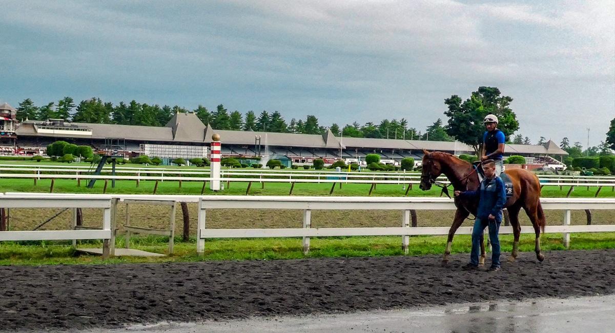 Back Stretch at Saratoga Race Course.   Christine Hinz