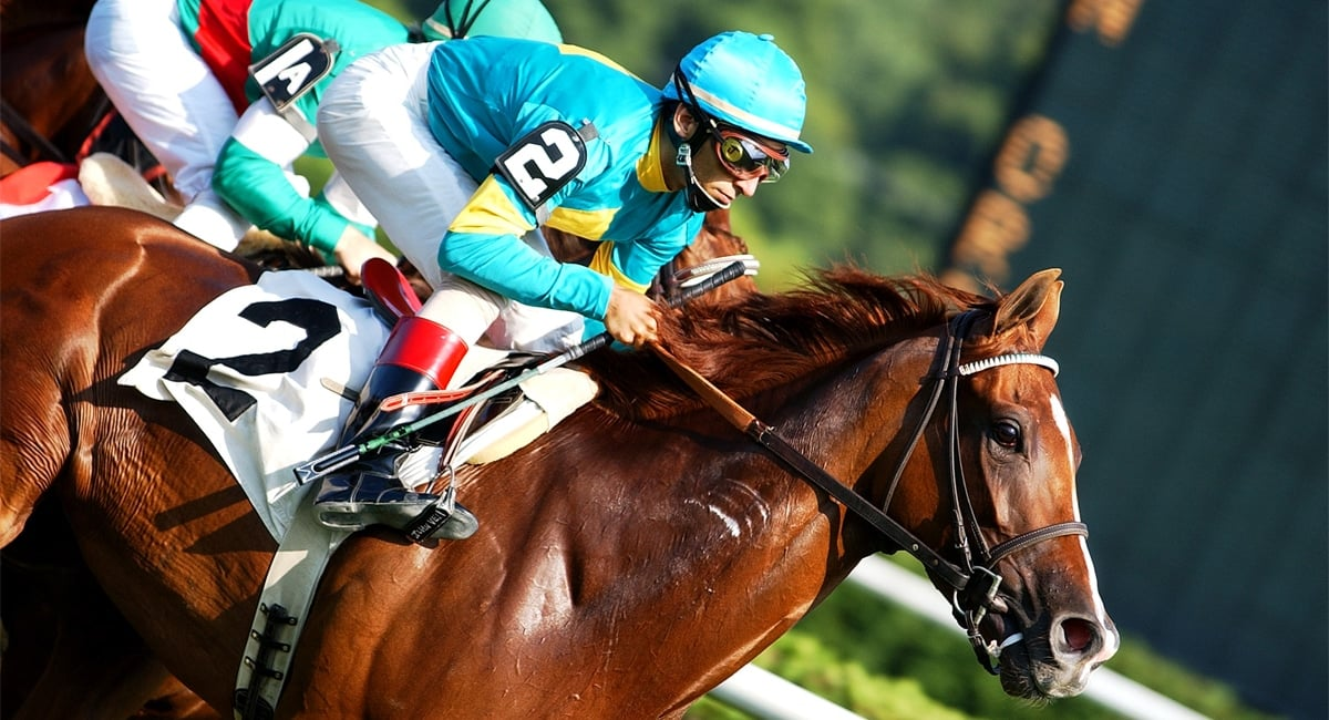 Saratoga Thoroughbred Racing Season