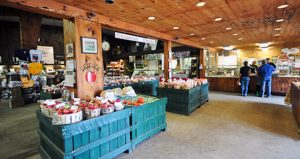 Brookview Station Winery/Goold Orchards