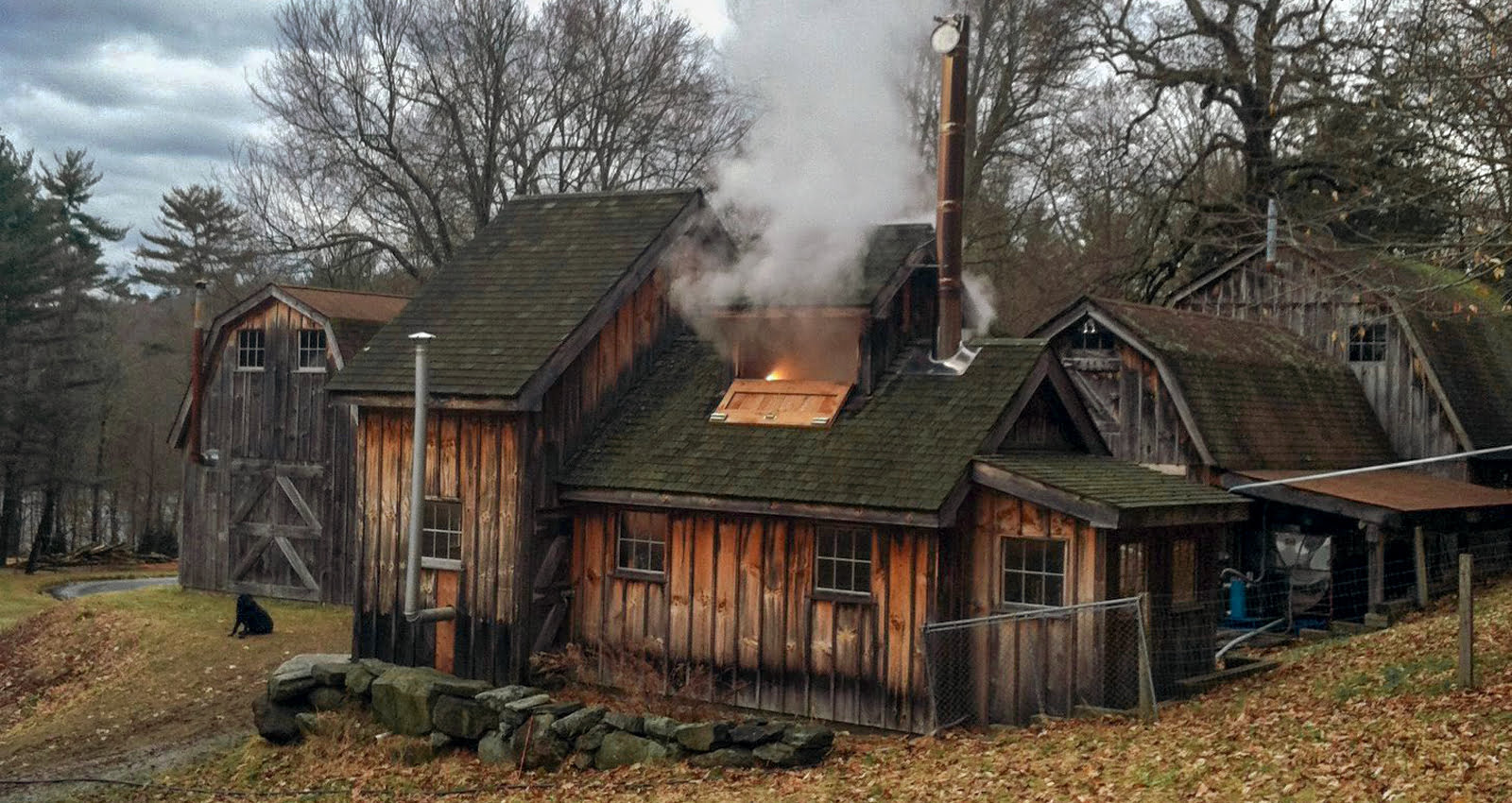 New York Maple Weekend | White Oak Farm