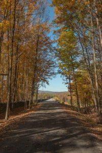 Explore Ulster County's Ashokan Rail Trail