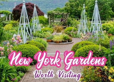 Gardens resized