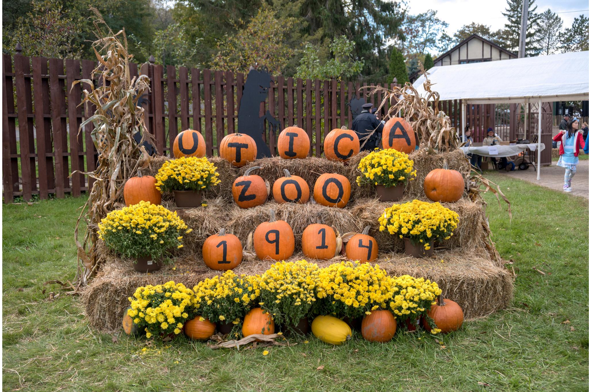 Spooktacular at Utica Zoo