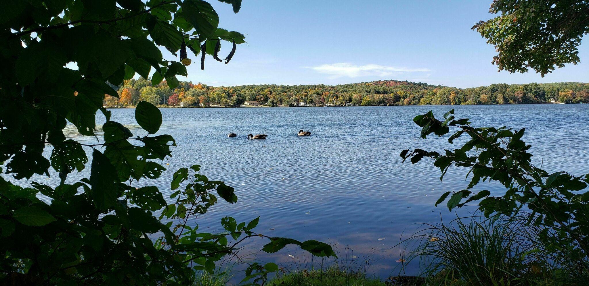 Albany Hudson Electric Trail