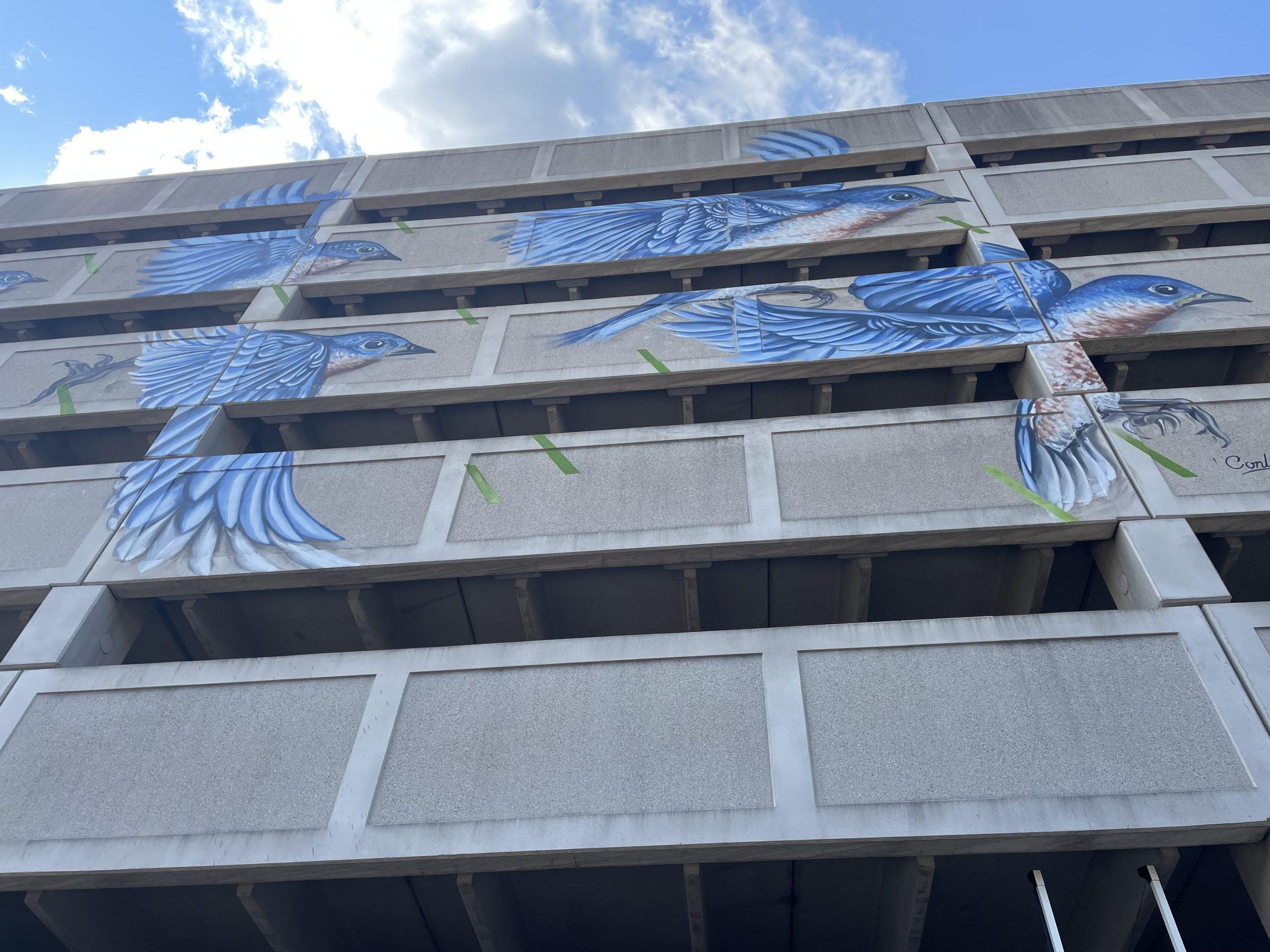 Capital Walls Murals