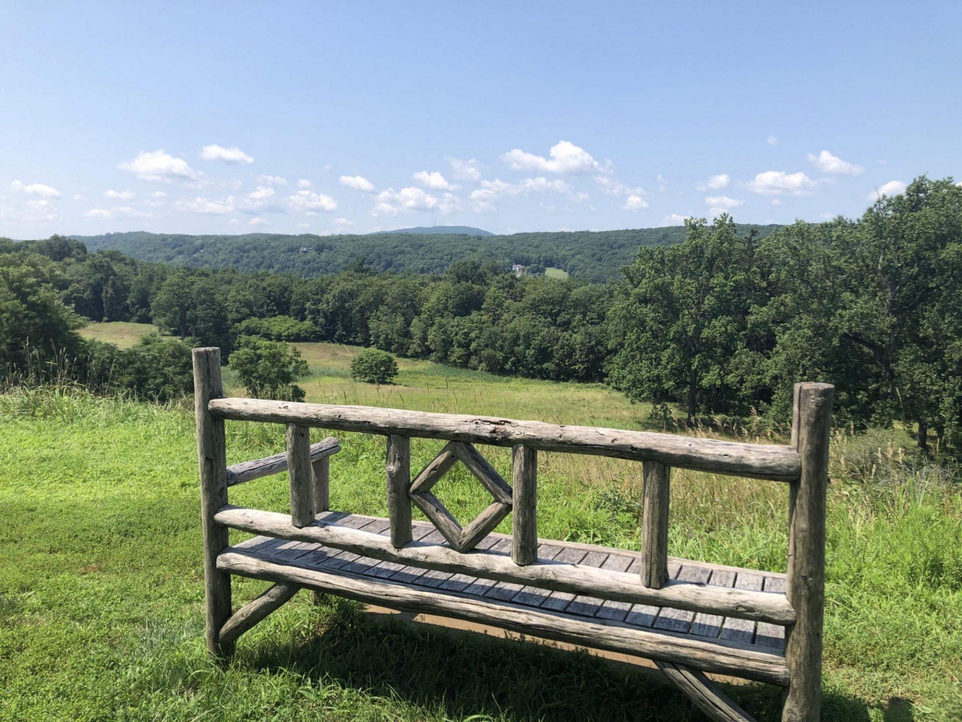View Behind Springwood